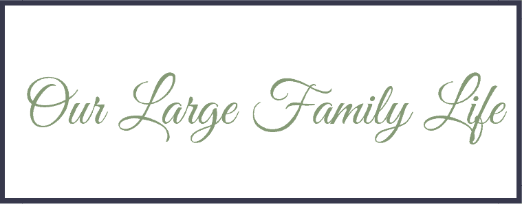 Our Large Family Life