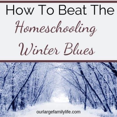 Homeschooling Through The Winter Blues