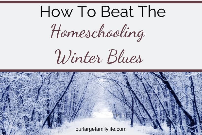 How To Beat The Homeschooling Winter Blues